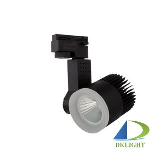 den led roi ray kingled 20w